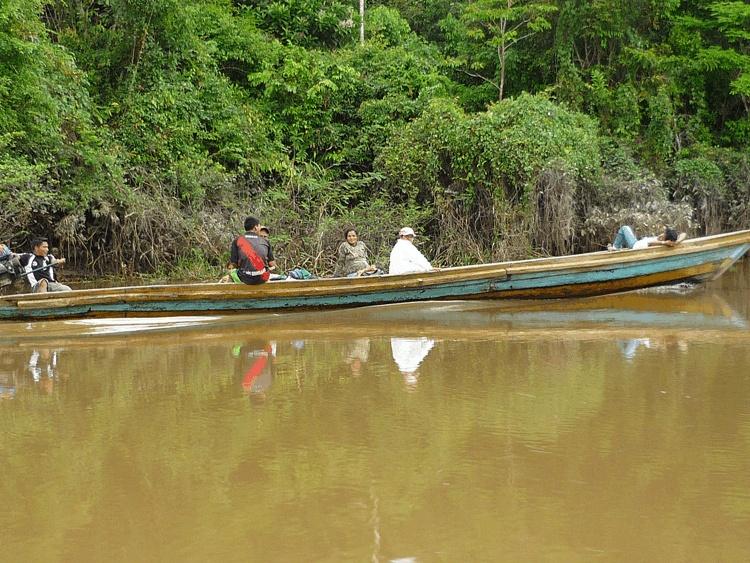 Navegando por el amazonas
